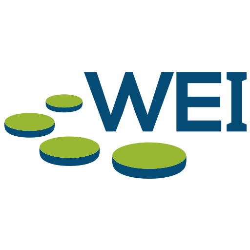 WEI - IT Solutions Provider - IT Consulting - Technology