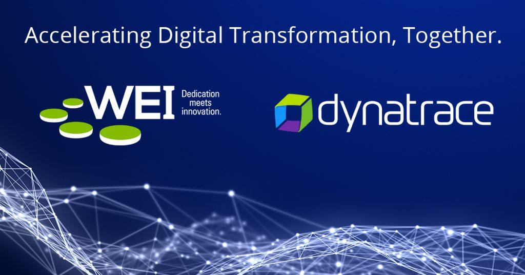 Dynatrace, digital transformation software intelligence, AI, cloud